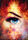Woman eye and mandala, Abstract color background and desert crackle. Royalty Free Stock Images