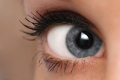 Woman eye mascara. Closeup woman eye mascara and makeup Royalty Free Stock Photos