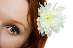Woman eye with natural looking makeup Royalty Free Stock Photography
