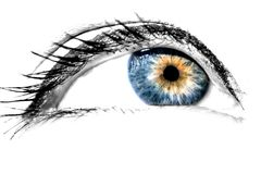 Woman eye with painted long eyelashes close-up macro isolated on a white. Background stock photos