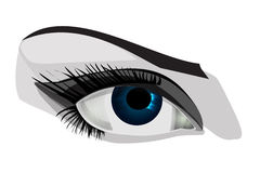 Woman eye, vector illustration Royalty Free Stock Photography