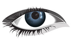 Woman eye, vector illustration Stock Photography