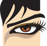 Woman eye. Vector illustration. Closeup of a woman eye. Vector illustration Royalty Free Stock Photo