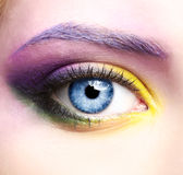 Woman eye zone make up Royalty Free Stock Photo