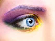 Woman eye zone make up Stock Image