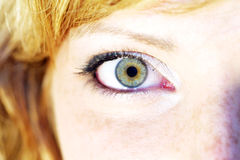 Woman eyes. Eye of a girl Stock Images