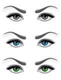 Woman eyes royalty free illustration