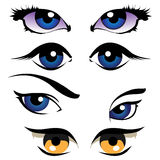 Woman eyes. Beautiful different type girl eyes Royalty Free Stock Photo