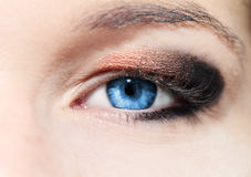 Woman eyes. Stock Images