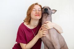 A woman hugging with a Mexican Hairless Dog. A woman with eyes closed hugging with a Mexican Hairless Dog Stock Photos