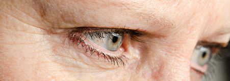 Woman eyes Stock Images