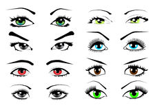 Woman eyes collection, vector illustration Stock Images