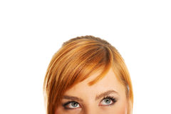 Woman eyes with long lashes. Looking Stock Image