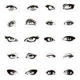 Woman eyes vector. Beautiful female eye set or ink drawing Stock Photos