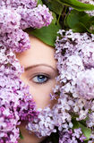 Woman face with flower lilac frame. Woman beautiful face with flower lilac frame Royalty Free Stock Images