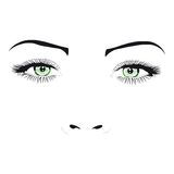 Woman face green eyes vector illustration Stock Image