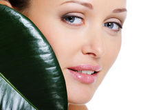 Woman face with a leaf cover her beauty face Royalty Free Stock Photos