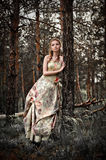 Woman in fairy forest. Portrait of romantic woman in fairy forest royalty free stock image