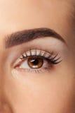 Woman with fake eyelashes and no make up Stock Photos