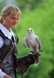 Woman Falconer Stock Photos