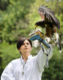 Woman falconer. Trezzo sullAdda, Italy, June 22nd, 2014: Female falconer holding a owl on his arm at the Falconeria demonstration Stock Photo