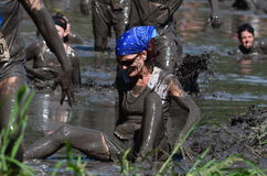 Woman Falling in the mud. A woman falls in the mud as she tries to  wade through a muddy river in the 2013 marathon called a Mudathlon, in north west Indiana Royalty Free Stock Photos