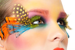 Woman with false feather eyelashes makeup Stock Image