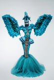 Woman in fantasy costume with feather sleeves. And curvy silhouette Royalty Free Stock Image