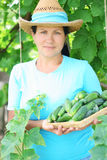 A woman farmer Stock Photography