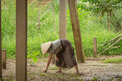 Woman farmer on filed. Stock Images