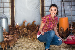 Woman farmer giving feeding stuff to chickens Royalty Free Stock Photography