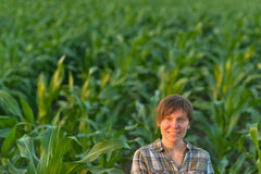 Woman farmer in green corn field Stock Image