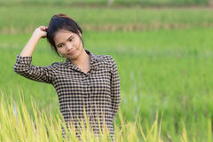 Woman farmer in Green Cornfield Stock Images