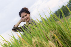 Woman farmer in Green Cornfield Stock Photos