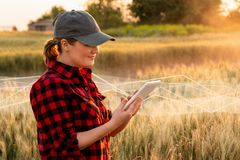 A woman farmer with tablet royalty free stock photography