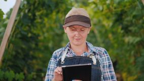 Woman farmer uses a tablet against the background of a well maintained vineyard stock video