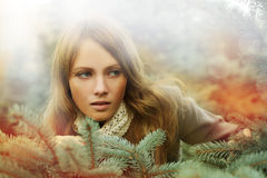 Woman, fashion beauty - desire. Christmas concept stock photography