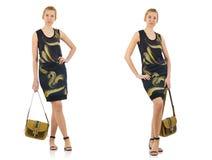 Woman fashion concept Stock Image