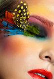 Woman with fashion feather eyelashes make-up Stock Image