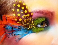 Woman with fashion feather eyelashes make-up Stock Photography