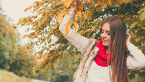 Woman fashion girl relaxing walking in autumnal park Stock Images