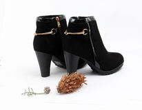 Woman fashion heels boot on white background Stock Images