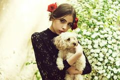 Woman hold dog with spanish makeup, rose in hair. Woman with fashionable makeup and red lips, has rose flower in hair spanish style in black dress at white royalty free stock image