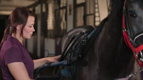 Woman is fastening lightweight cart with straps to horse