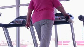 Woman with fat bottom walking on treadmill, active weight loss workout in gym. Stock footage stock video footage