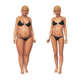 Woman Fat to Thin Weight Loss Transformation. 3D illustration of a transformation of a fat overweight woman and her thin fit counterpart Royalty Free Stock Photos