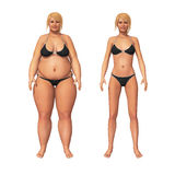 Woman Fat to Thin Weight Loss Transformation. 3D illustration of a transformation of a fat overweight woman and her thin fit counterpart Stock Image