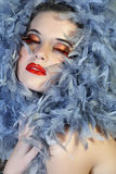 Woman in feathers with long lashes. Beautiful woman with face framed in silver grey feathers with long faux lashes Royalty Free Stock Images