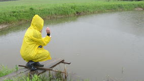 Woman feed fish rain stock footage
