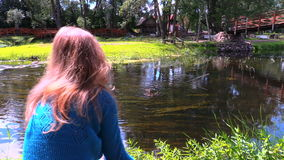 Woman feeding with bread wild duck birds in flowing river water stock footage